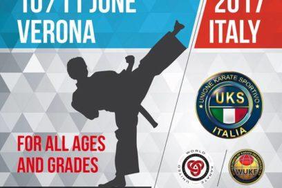 Black Belt Cup 2017 – Villafranca (Vr) 10-11/06/2017